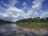 The Itui River, Remote Tributary of the Amazon, Rimmed by Rain Forest Photographic Print by Stephen St. John