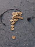Gold Coins Stamped with a Cross are Scattered on a Beach Photographic Print by Luis Marden