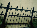The Shadow of a Wrought-Iron Fence Throws a Pattern Across the Sidewalk Photographic Print by Stephen St. John
