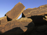 Petroglyphs Near Little Colorado River, Arizona Photographic Print by David Edwards
