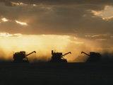 Combines Silhouetted at Dusk Fotografisk tryk af David Boyer