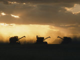 Combines Silhouetted at Dusk Lámina fotográfica por David Boyer