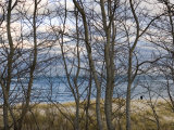 New England Massachusetts Beach Scene in Cape Cod, United States Photographic Print by  Keenpress