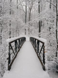 A View of a Snow-Covered Bridge in the Woods Fotografisk tryk af Richard Nowitz
