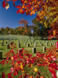 Autumnal View of Arlington National Cemetery Photographic Print by Richard Nowitz