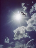 Gulls Silhouetted against the Sun Photographic Print by Emory Kristof