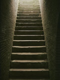 Cellar Steps Photographic Print by Scott Sroka