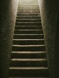 Cellar Steps Photographic Print by Scott Sroka