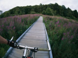 Self-Portrait of Tim Laman Mountain Biking Along a Wooden Path Photographic Print by Tim Laman