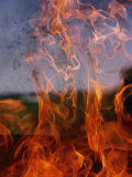 Close View of Fire Photographic Print by Brian Gordon Green
