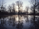 View of Bloody Pond Photographic Print by Sam Abell