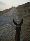 A Couple and a Donkey Walk up the Cobblestone Road to the Acropolis Photographic Print by Tino Soriano