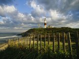 Lighthouse at Montauk with Dramatic Sky Photographic Print by Skip Brown
