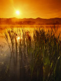 Sunrise over a Misty Pond and the Presidential Mountains Fotografisk tryk af Richard Nowitz