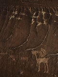 Indian Petroglyph Depicting a Mountain Sheep Fotografisk tryk af Paul Chesley