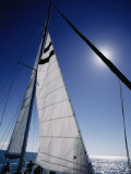 A Tourist Catamaran on Shark Bay in the Afternoon Photographic Print by Jason Edwards