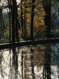 Reflecting Pool and Oaks at Theodore Roosevelts Memorial Photographic Print by Raymond Gehman