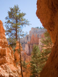 A View of the Hoodoos and Erosion in Bryce Canyon Photographic Print by Taylor S. Kennedy