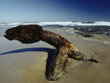 A 19th Century Shipwreck Anchor Stranded on a Beach Photographic Print by Jason Edwards