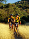A Couple of Mountain Bikers Ride Along the Dirt Path Photographic Print by Barry Tessman