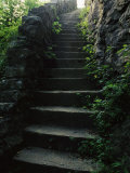 Stone Stairs Lead to the Top of Morgans Steep in Sewanee Photographie par Stephen Alvarez