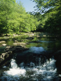 Waterfalls on the Eno River Passing Through a Hardwood Forest Stampa fotografica di Gehman, Raymond