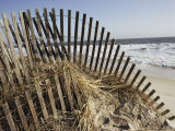 A Sand Fence Used to Control Dune Erosion Photographic Print by Stephen St. John