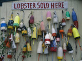Colorful Lobster Buoys Hang on a New England Shed Photographic Print by Stephen St. John
