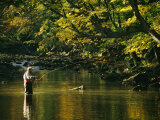 Fly Fisherman Casts his Line into the Elk River Fotografisk tryk af Skip Brown