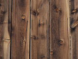 Wood-Paneled Wall Photographic Print by David Boyer
