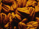 Close View of Shelled Pecans in Warm Light Photographic Print by Brian Gordon Green