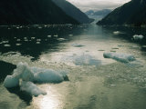 Small Pieces of Ice Floating in Glacier Bay Photographic Print by Anne Keiser
