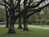 Child Strolls along a Path in Londons Hyde Park Photographic Print by Karen Kasmauski