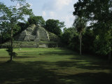 The Jaguar Temple at the Lamanai Archeological Preserve in Belize Photographic Print by Stephen Alvarez