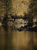 Footbridge over the Merced River Photographic Print by Marc Moritsch