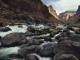 Colorado River Flows over a Rocky Streambed Photographic Print by W. E. Garrett