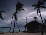 A Storm Ravages the Palm Trees and Huts on Glovers Reef Photographic Print by Bill Hatcher