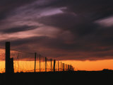 Australias Famous Dog Fence at Twilight Photographic Print by Medford Taylor