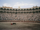A Bullfight in Madrid Photographic Print by Walter Meayers Edwards