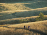 Bicyclists Pedal a Trail Through the Rolling Hills Photographic Print by Skip Brown