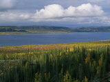 Autumn Foliage Surrounds Campbell Lake Near Inuvik Photographic Print by Raymond Gehman