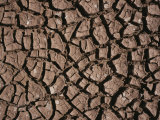A Close View of Dried Mud in the Chalbi Desert Photographic Print by Bobby Model