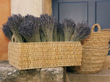 Basket Full of Herbs Photographic Print by Nicole Duplaix