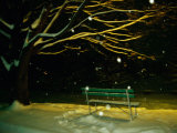 Snow Falls on a Park Bench at Night Fotografisk tryk af Raymond Gehman