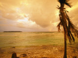 A Tropical Beach Scene with an Island in the Background Fotografie-Druck von Kate Thompson