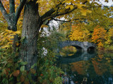Autumnal View of a Stone Bridge Photographic Print by Robert Madden