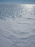 A Bare Ice Glacier and Wind Carved Sastrugi Snow on Antarctic Icecap Photographic Print by Gordon Wiltsie