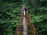 Two Children Walk Along a Wooden Walkway in the Rain Lámina fotográfica por Kasmauski, Karen