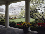 View of the Rose Garden from the White House Photographic Print by Joseph H. Bailey