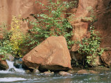 Red Rocks, Fall Colors and Creek, Oak Creek Canyon, Arizona Photographic Print by Rich Reid